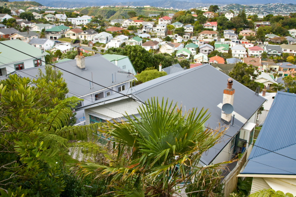 roofs of residential homes